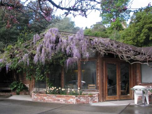 Fern Lodge